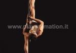 poledance_3