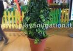 piante viventi play animation.JPG