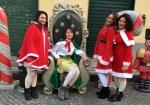 nataline ed elfi