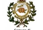 comune-di-pomigliano-darco